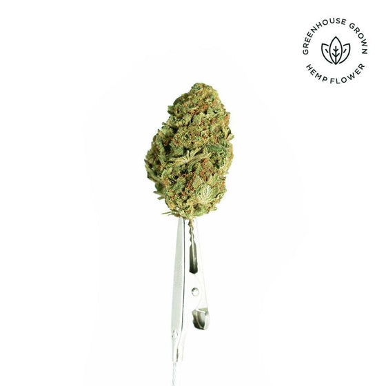 Tangie CBD Premium Greenhouse Hemp Flower