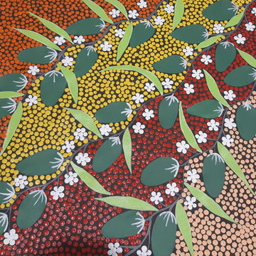Indigenous-Art-Bush-Bananas-Susie-Pope