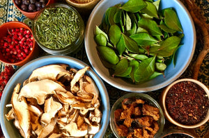 The Foraged Spice Rack: Cooking with Wild Herbs & Spices