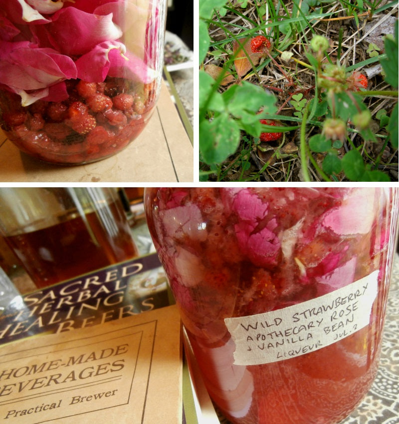 wild strawberry liqueur