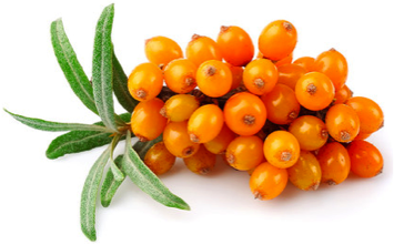 seabuckthorn for your skin