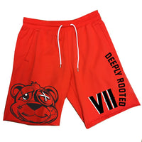 DR BEAR SHORTS