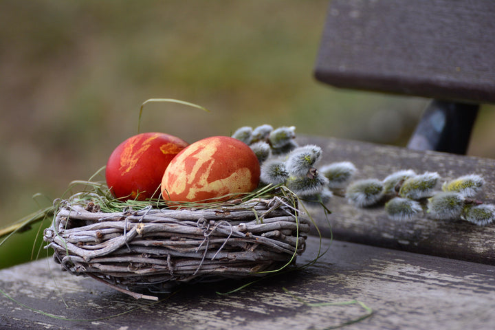 5 Easy Ways To Have an Eco-Friendly Easter