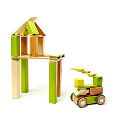 Tegu 42-Piece Magnetic Wooden Block Set