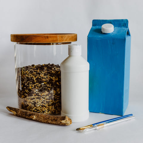 Milk carton bird feeder eco friendly craft for Earth Day from Oompa Toys