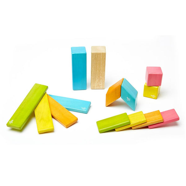 Tegu Magnetic Wooden Blocks - 14 Piece Set - Tints