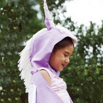 Silk Unicorn Costume