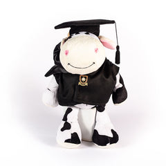 graduation-bachelor-cow