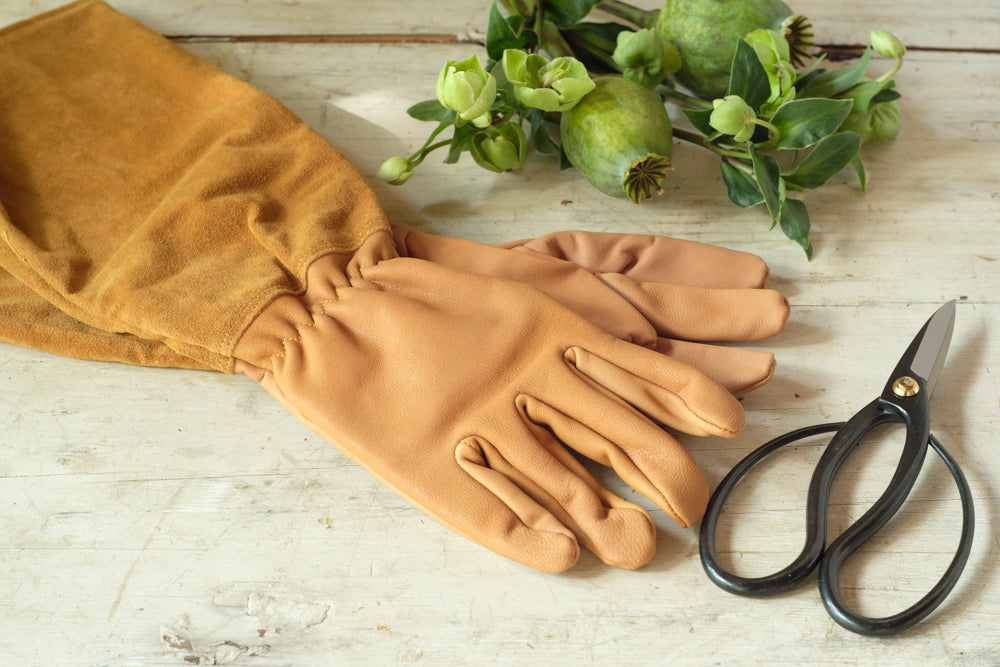 Élan Flowers - gardening gloves delivered in New York City