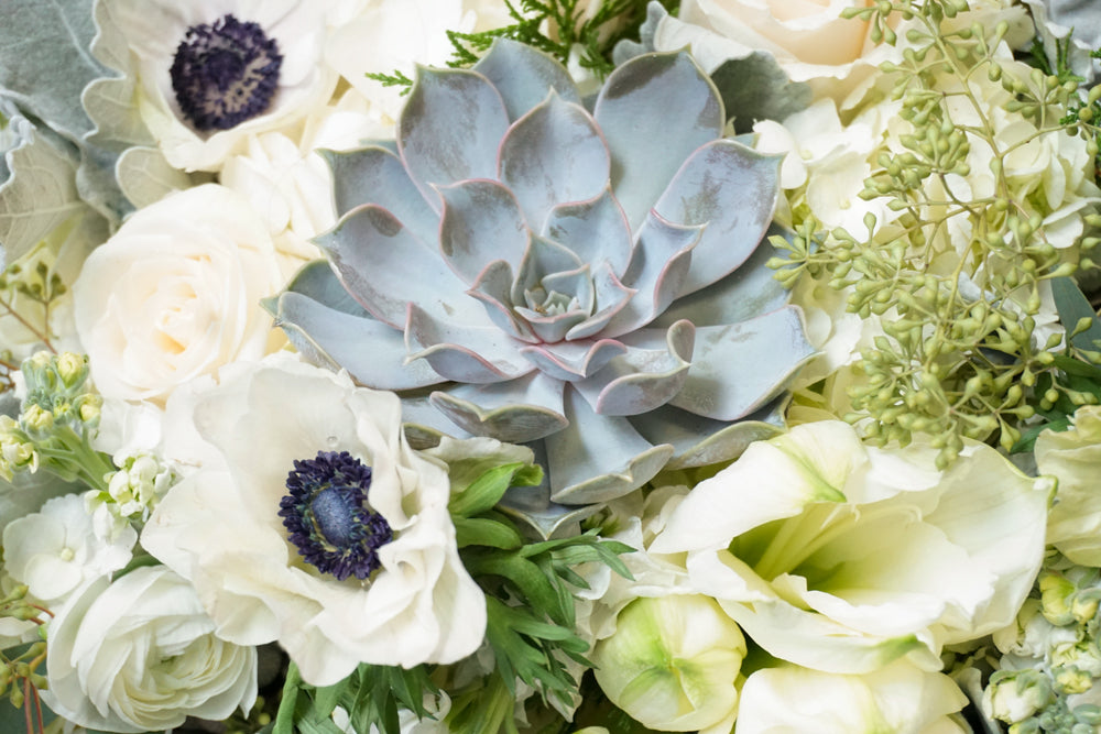 Winter's Peak - Élan Flowers - evergreen, white roses, anenomes, succulents