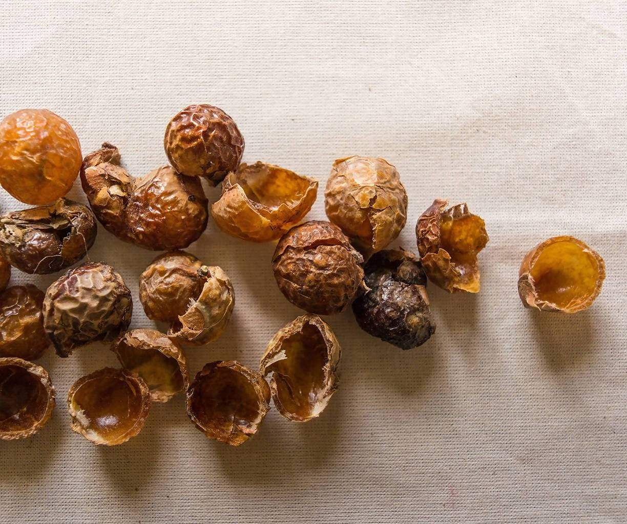 Loose Soapnut Shells