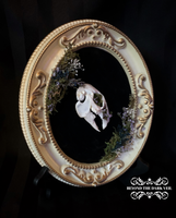 Enchanted Forest Rabbit Skull Cameo