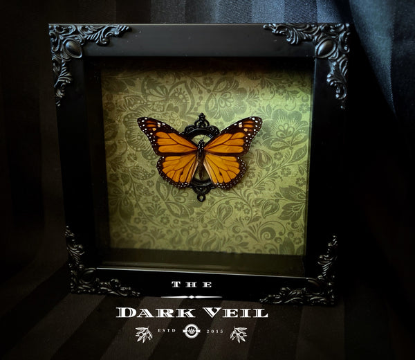 Classic Monarch Butterfly Shadow Box