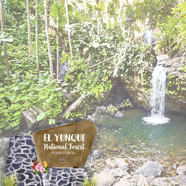 PUERTO RICO - EL YUNQUE NATIONAL FOREST PAPER