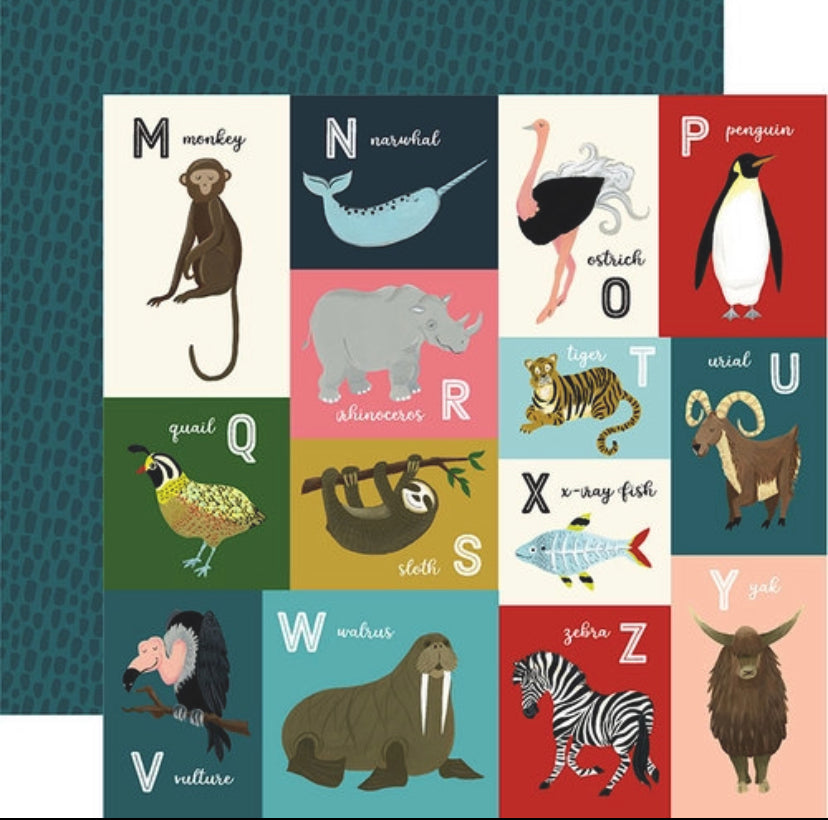Echo Park - Animal Safari Collection - 12 x 12 Double Sided Paper - M-Z Animal Alphabet Cards