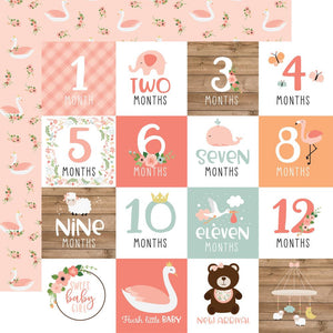 "Baby Girl Double-Sided Cardstock 12""X12"""