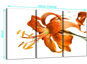 3 Panel Lilies Canvas Prints UK 125cm x 60cm 3142