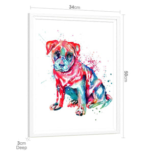 Staffordshire Bull Terrier Framed Wall Art Print - Multicoloured