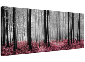 Canvas prints forest scenes