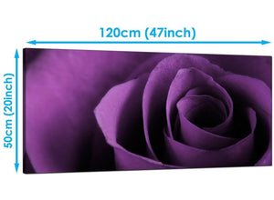 Modern Purple Extra Large Canvas of Rose