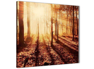 Framed Trees Canvas Wall Art Autumn Leaves Forest Scenic Landscapes - 1s386m Orange - 64cm Square Picture