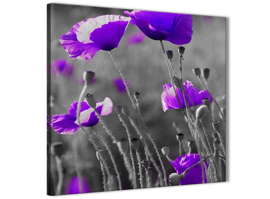 Modern Purple Poppy Grey Black White Flower Floral Abstract Office Canvas Wall Art Decorations 1s136l - 79cm Square Print