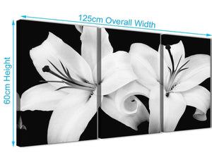 Quality 3 Panel Black White Lily Flower Kitchen Canvas Pictures Accessories - 3458 - 126cm Set of Prints
