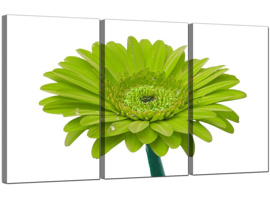 Set of 3 Floral Canvas Prints Daisy Flower 3098