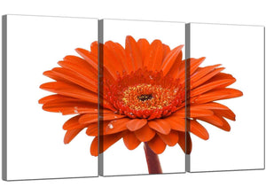 3 Panel Floral Canvas Wall Art Daisy Flower 3140