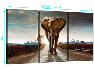 Set of 3 African Elephant Canvas Prints UK 125cm x 60cm 3209