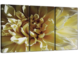 Set of 3 Floral Canvas Wall Art Flower 3104