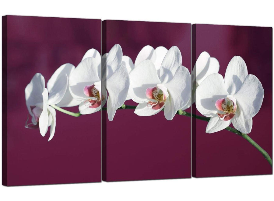 Set of 3 Flower Canvas Pictures Orchids 3116
