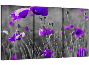 Set of Three Floral Canvas Art Violet Poppies 3136