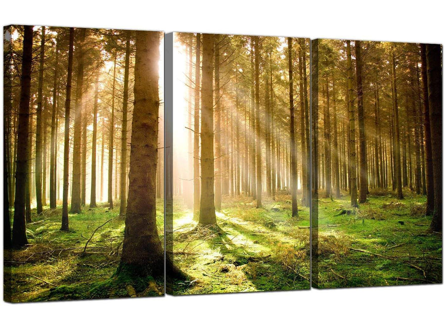 Set of 3 Landscape Canvas Art Woodland 3042