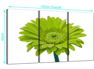 Set of 3 Gerbera Canvas Prints 125cm x 60cm 3098