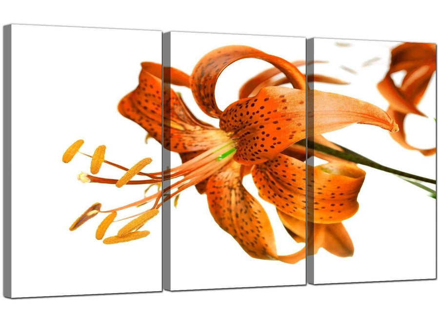 Set of 3 Flower Canvas Wall Art Lily 3142