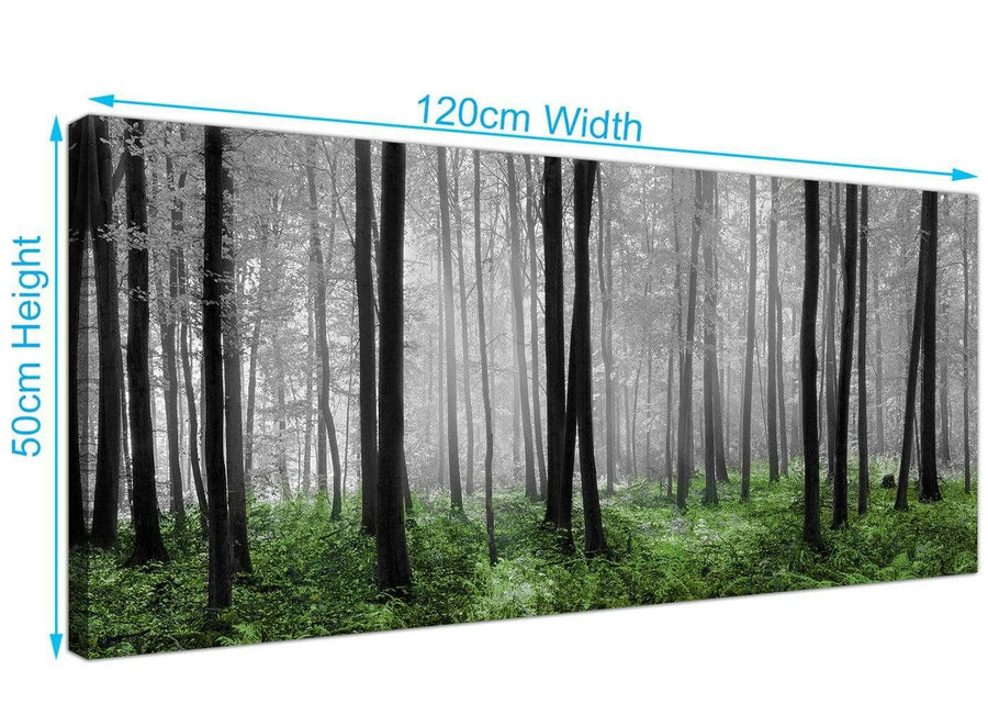 woodland trees scene canvas 1239