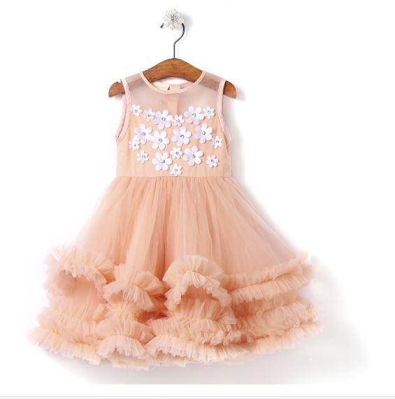 Fairies Forever Net Peach Party Dress with Attached Flowers