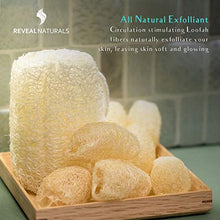 Load image into Gallery viewer, Peppermint Loofah Soap - Reveal Naturals