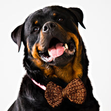 Load image into Gallery viewer, Knit Dog Bow Tie