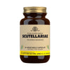 Scutellariae Vegetable Capsules - Pack of 50