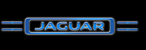 JAGUAR LOGO PROJECROTR LIGHTS Nr.12 (quantity 1 = 1 sets/2 door lights)