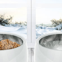 Load image in gallery viewer, Heating Constant Temperature Control Pet Winter Feeder