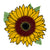 Sunflower Sublimation Design File, Sublimation Sunflower, Sunflower Sublimation Digital Download, Sublimation Sunflower