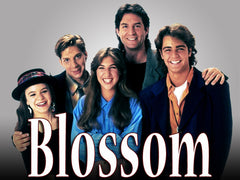 TV Blossom TV Show 1991-1995 Complete 114 Episodes 23 DVDs