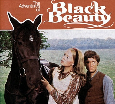 TV THE ADVENTURES OF BLACK BEAUTY COMPLETE 52 EPISODES DVD SET VERY RARE  1972-74