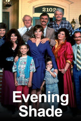 TV EVENING SHADE ALMOST COMPLETE SITCOM 90'S BURT REYNOLDS VERY RARE DVD SET 1990-93