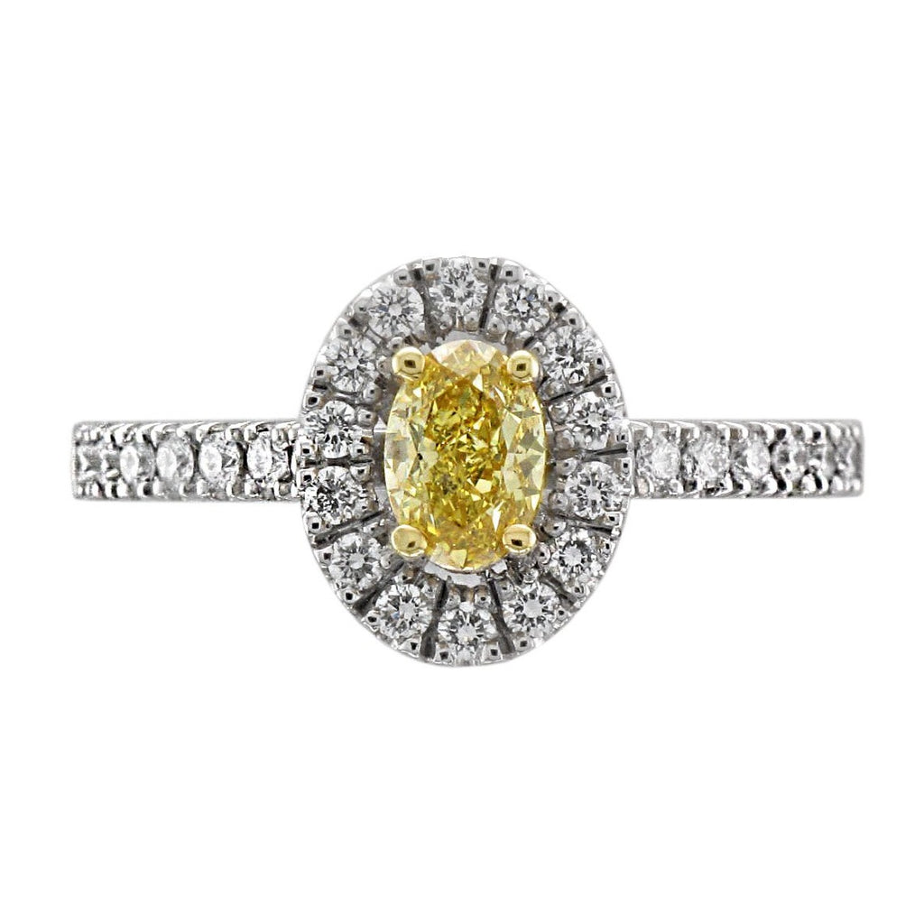 Platinum & 18ct Yellow Gold Oval Yellow Diamond Halo Ring - Andrew Scott