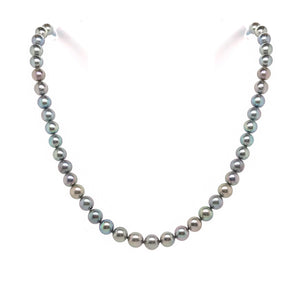 Silver Akoya Pearl Necklace - Andrew Scott