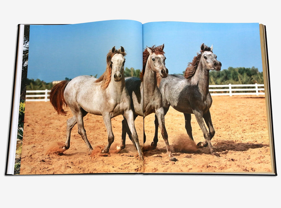 Arabian Horses Coffee Table Book